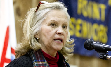 File photo of Assemblywoman Linda Stender (D-Union), who will be deputy director and project manager at the Union County Improvement Authority. (Bill Perlman | NJ Advance Media for NJ.com)