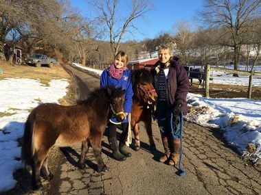 Tempe Lynn Salatiello and her mother, Dr. Mary Beth Hamorski welcome two miniature horses to their farm. The little horses were at the Hunterdon Humane Shelter whihc was recently taken over by the New Jersey SPCA. (Photo courtesy the Barnyard Sanctuary)