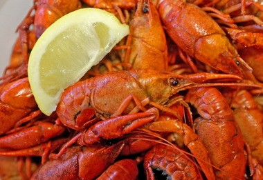Boiled crawfish at Salvo's Seafood in Belle Chasse photographed on Wednesday, March 2, 2016. (Photo by Michael DeMocker, NOLA.com | The Times-Picayune)