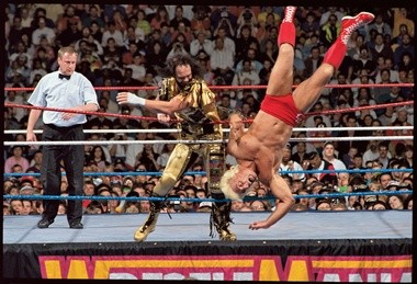 Randy Savage and Ric Flair had a good title match at WrestleMania VIII, but a title match between Flair and Hulk Hogan might have been epic.