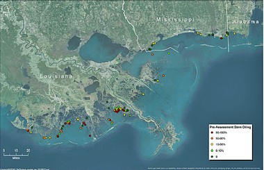 This map shows the locations where erosion rates were monitored in the aftermath of the BP oil spill in 2010. The red dots indicate where oil covered 90 percent or more of the stems of wetland grasses.