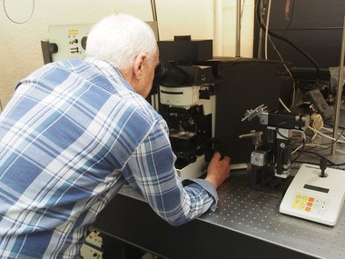 A Stanford University researcher looking at cells with a confocal microscope, which uses laser scanning to document tiny cellular actions. This type of microscope was used to help explain how phenanthrene, a chemical found in oil from the BP Macondo well, can disrupt the electronic signals that regulate heart muscles in tuna and other fish.