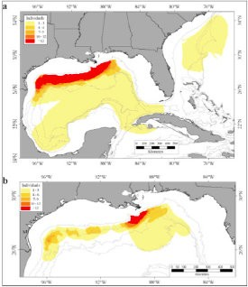Home range (a) and core area (b) for satellite-tracked sperm whales in the Gulf of Mexico. The color contours indicate the number of whales that use the area. The line contours represent the 200-, 1,000-, 2,000- and 3,000-meter water depths.