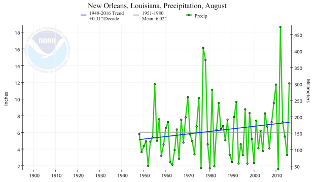 Total August rainfall in New Orleans has increased by 0.31 inches per decade since 1948. Graphic provided by Climate Nexus.