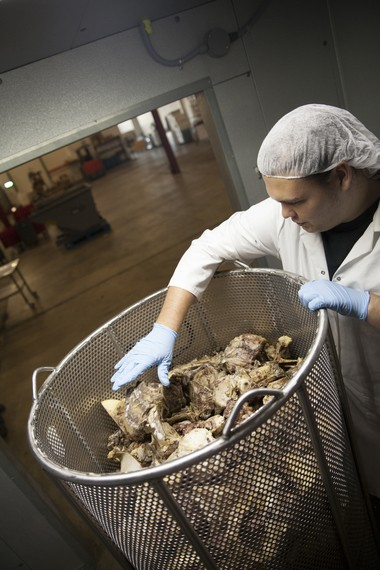 A Cauldron Broths employee checks out 1,000 pounds of seared beef bones, to be used for a single batch of the company's beef broth. Photo by Hayley Young for The Washington Post.)
