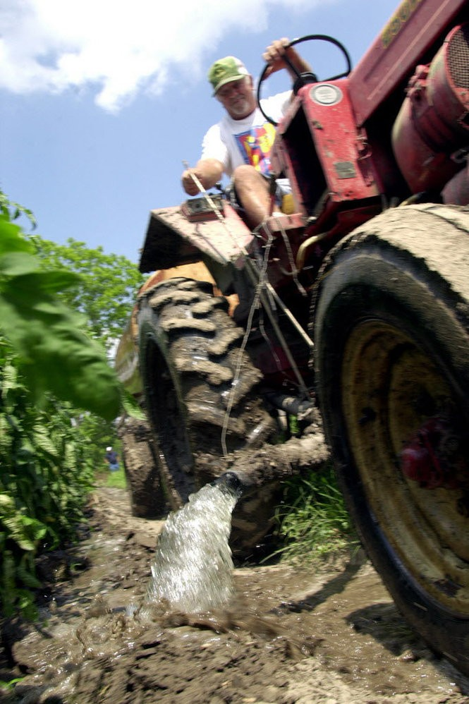 On Tuesday May 7, 2002, Plaquemines Parish farmer Anthony LaGreco, brother of Emile LaGreco, poured Mississippi River water onto some of the 7,000 plants he had growing at his farm. LaGreco had to irrigate because of drought conditions that year. At that time, he hadn't had any rain since early April. (Photo by Chris Granger, NOLA.com | The Times-Picayune archive)