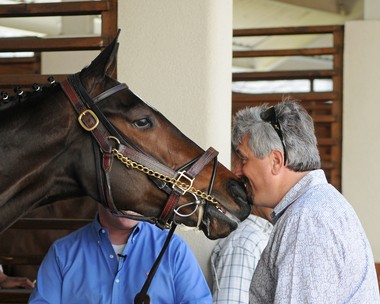 Rachel Alexandra trained and raced at the New Orleans Fair Grounds in 2010 under Steve Asmussen.