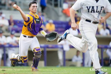 LSU junior Chris Chinea will get playing time at catcher and first base this season.