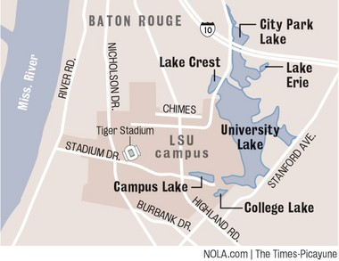 The current layout of the LSU lakes system is comprised of six separate lakes. Proposed plans would connect University, City Park and Crest lakes; Campus and College lakes would connect; and Lake Erie would stand alone. (Dan Swenson, NOLA.com | The Times-Picayune)