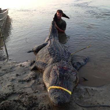 Dustin Bockman, a UPS driver from Vicksburg, took the 727-pound alligator in the Mississippi River in Claiborne County. It was 13-feet, 4.5-inches long.