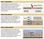 Step by step: Graphic shows how river water is turned into drinking water