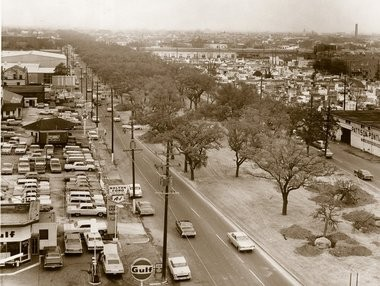 The oak trees on the neutral ground on North Claiborne Avenue in New Orleans, February, 1966. The trees were dug up to make way for the elevated leg of the I-10 extension.