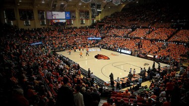 A look at the new court design planned for Gill Coliseum.
