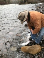 Jim Monroe of Sisters gets ready to release a wild winter steelhead after a vigorous workout.