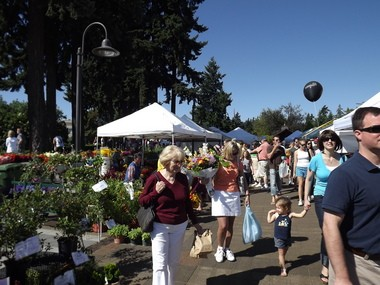 Visitors peruse vendor booths at the Lake Oswego Farmers Market.