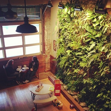 Learn how to create a vertical garden in a workshop offered on Sundays at the Singer Hill Cafe.