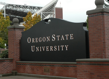 A former Oregon State University student was charged with public indecency this week for allegedly recording an adult film in the campus library, university officials said.