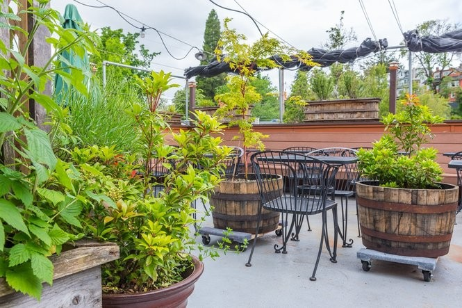 Portland's 10 best rooftop bars, ranked by their views ...