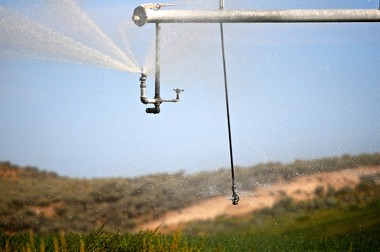 A sprinkler head sends water spraying onto a farm field in Harney County, where dropping well water levels last year spurred state regulators to clamp down on issuing groundwater permits.