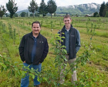 Business partners Peter Mulligan (left) and Galen Williams stand in a promising orchard of apple trees north of Forest Grove at their new Bull Run Cider works.