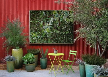 From Flora Grubb Gardens in San Francisco, a large living succulent wall in an outdoor area.