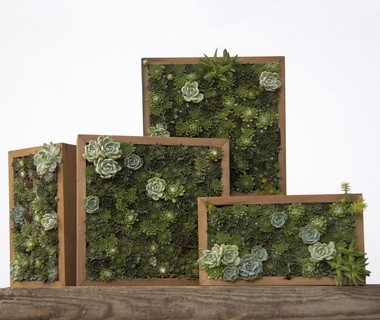 Flora Grubb Gardens' succulent displays include various horizontal and vertical living arrangements of cuttings.