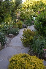 A flagstone path meanders through the garden of Wynton and Pajunas.