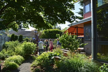 The Malones' gorgeous back yard, including their bottle tree, can be seen on the ANLD tour.