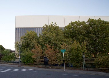 The preservation group Friends of Memorial Coliseum says trees planted around the arena hides its architectural beauty.