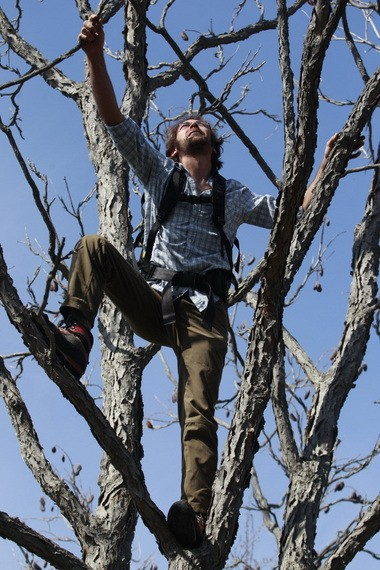 In this Saturday, May 4, 2013 photo, Ethan Welty, co-founder of the urban foraging website fallingfruit.org, climbs a tree looking for edible fruit, at a public park, in Boulder, Colo. Welty's website, which grew out of one of his hobbies, already points the way to more than half a million edible plants in public spaces worldwide, and it is growing.