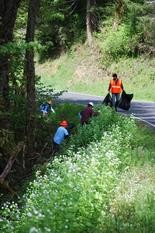 CRISP partners are planning invasive weed control and natural area restoration activities in four priority areas. (Photo courtesy Clackamas Soil and Water Conservation District)