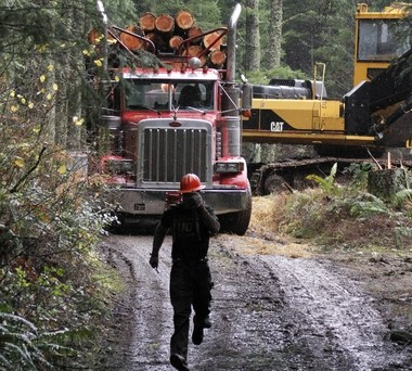 Logger Eric Davis runs down the road as a truck loaded with logs is readied in the forest near Banks in December 2012. A proposal in the Oregon Senate asks for Congress to turn over management of 2.7 million acres of federal timberlands to a trust that would manage 1.6 million acres of it for harvest.