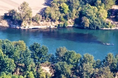 While the nearby black discharge in the river is easy to see, information about who's responsible for the faulty discharge pipe is not.