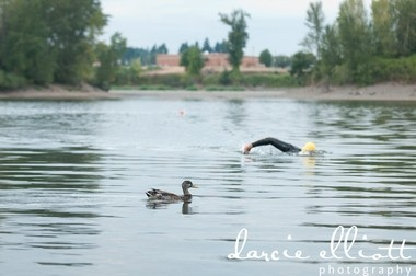 A swimmer in Clackamas Cove passes a duck.