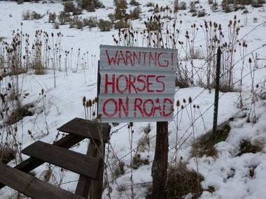 A homemade sign warns motorists to be wary of ownerless horses. Rocky Mountain elk and stallions among the horses have damaged ranchersâ fences, and residents often encounter horses on the road.