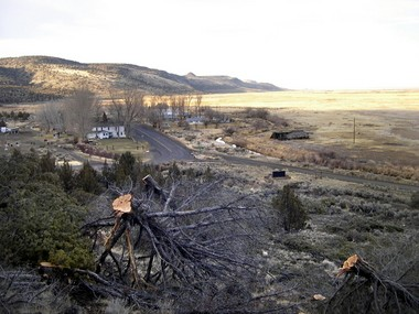 A Malheur National Wildlife Refuge crew thinned these junipers in and near Frenchglen in 2009. At the time, a refuge spokesman said juniper forests were a relatively new phenomenon and could pose a risk by carrying a wildfire into the town.