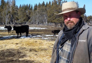 Rancher Todd Nash, owner of a 550-cow spread near Joseph, is expecting trouble from the Imnaha pack of gray wolves this spring and next summer. The pack has a half-dozen new additions, all weighing in at about 70 pounds.
