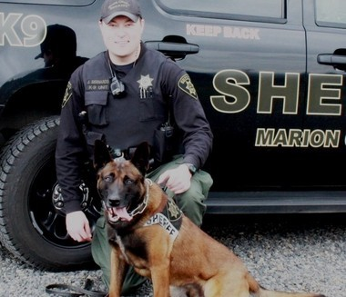 Marion County Jason Bernards just started working with Rolo this year. The dog, a 3-year-old Belgian Malinois is particular good at tracking suspects.