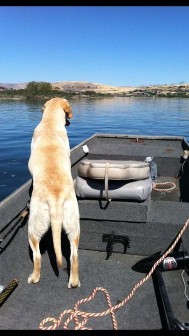 Cabela boating.