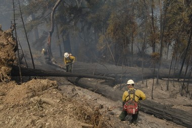 Firefighters combat the Douglas Complex blaze in southwestern Oregon.