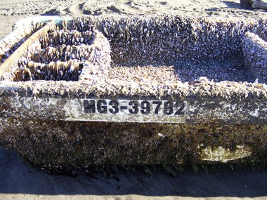 The number on this seaweed-covered skiff helped trace it back to Japan.