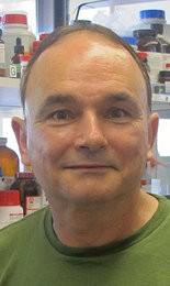 Scott Bridgham