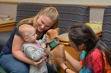 Lucy and her handler, Florence Kawai, bring furry comfort to patients at Providence St. Vincent Medical Center.