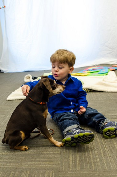 Teaching kids appropriate ways to interact with dogs can help prevent bites.