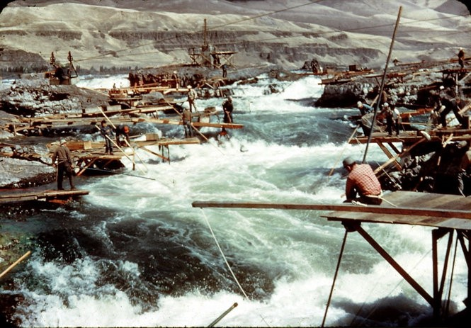 "Tribal members caught millions of pounds of salmon at Celilo Falls before it was submerged by The Dalles Dam. The loss of the falls drastically changed the village there, which has been inhabited for at least 9,000 years. What was considered the ""Wall Street of the West,"" became plagued by poverty and substandard housing."