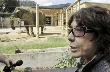 Comedian Lily Tomlin pushes for an elephant retirement at the Dallas Zoo in 2008.