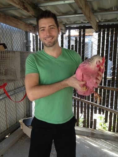 Pink chicken owner Bruce Whitman.