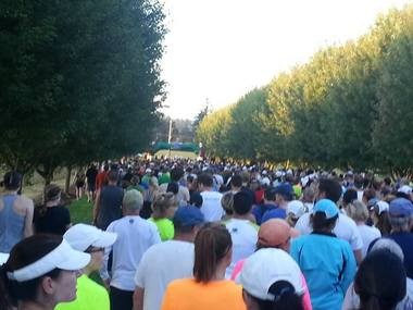 Oregon Wine Country Half Marathon Start Line