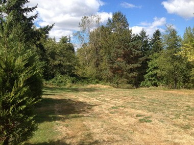 A view of the lot that the Marquettes sold to neighbors Michael Leland and Sandra Bittler for one-tenth of its $220,000 real-market value.
