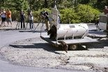 Reno news crews watch in the mountains above Lake Tahoe on Wednesday, Sept. 2, 2015, as Nevada Department of Wildlife officials release a mother bear and cub trapped the day before on the lake's north shore near Crystal Bay, Nevada. The vast majority of problem bears trapped at Tahoe are returned to the wild, but repeat offenders are euthanized when they lose their fear of humans.